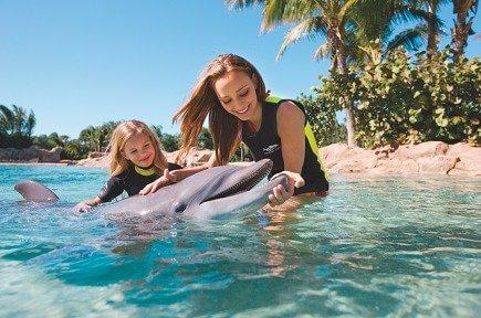 Disney World Resort, Universal Studios Orlando, SeaWorld, and more
