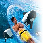 Top 10 Reasons to Visit Orlando Aquatica