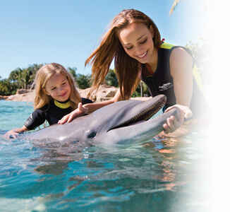 Discovery Cove Orlando Water Parks VillaDirect Vacation Rentals