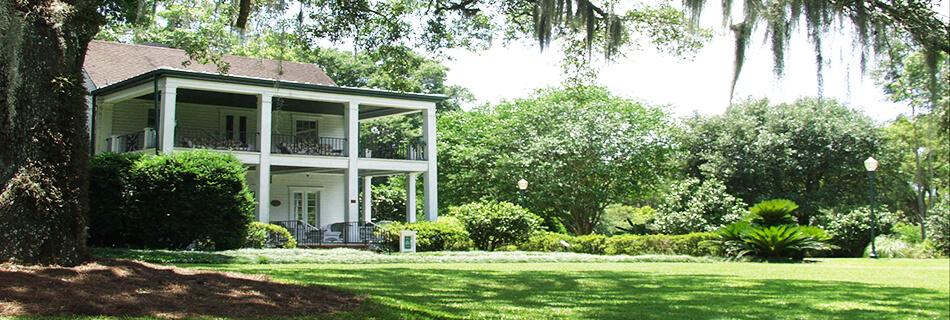 Orlando Spotlight: Leu Gardens