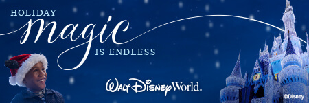 Disney Endless Magic - Holidays at Theme Parks in Orlando