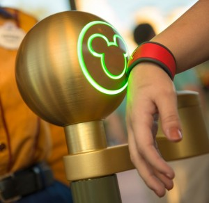 Budget Disney Vacation Fastpass