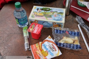 Budget Disney Vacation Pack Own Food