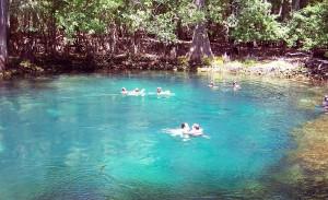 Natural springs orlando vacation rentals villadirect