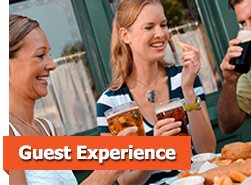 Guest Experiences