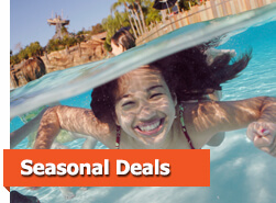 Year-round deals and discounts